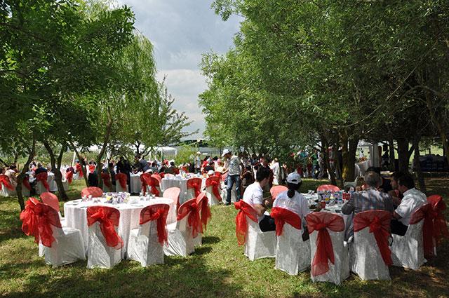 Piknik-organizasyon-dekorasyonu