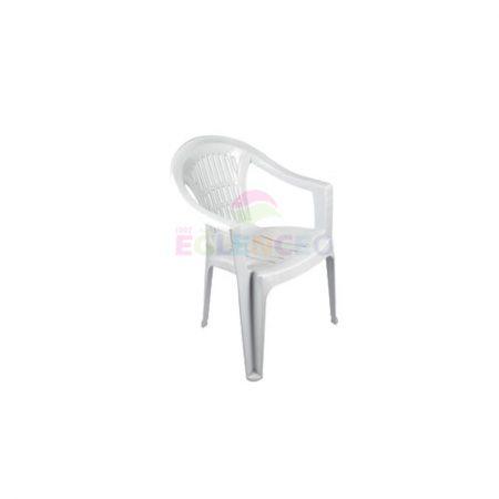 Kollu Plastik Sandalye