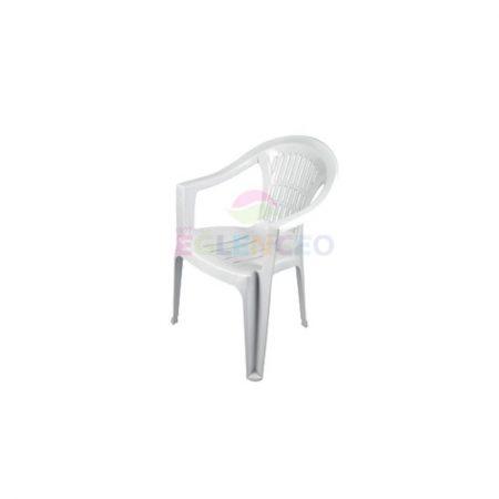 Plastik Sandalye Kollu