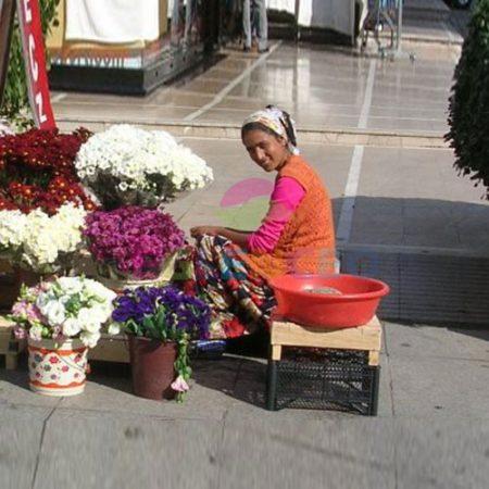 Sokak çiçekcisi standı